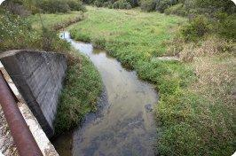 Rivers Creek Trout Stream Photos