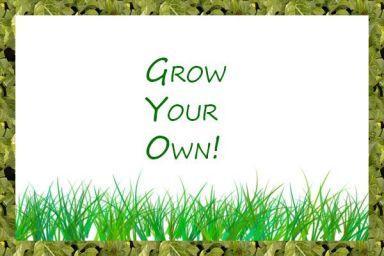 Grow Your Own Food!.jpg